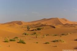 Personal desert
