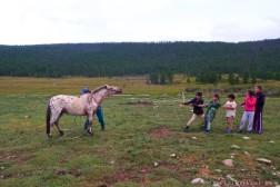 mongolia_006